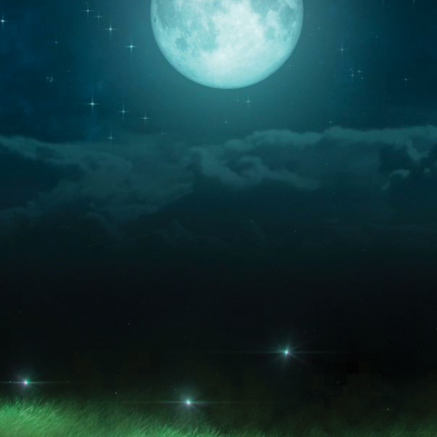 fireflies-kids-adults-relaxation-mysterious-main-location1