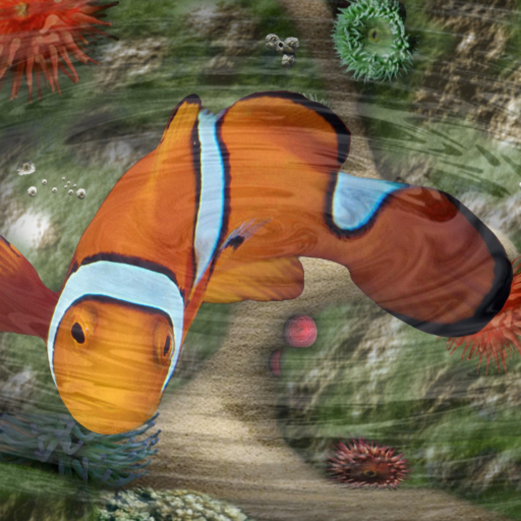 marine-fish-sensory-travel-kids-adults-relaxation-main-location1