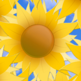 sunflowers-kids-adults-relaxation-main-location1