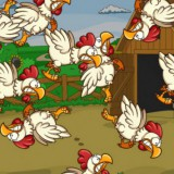 chickens-playtime-active-kids-main-location1