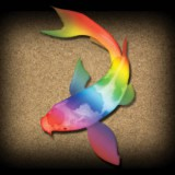 rainbow-fish-kids-adults-relaxation-surreal-sensory-main-location1