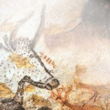 lascaux-painting-education-history-travel-adults-main-location
